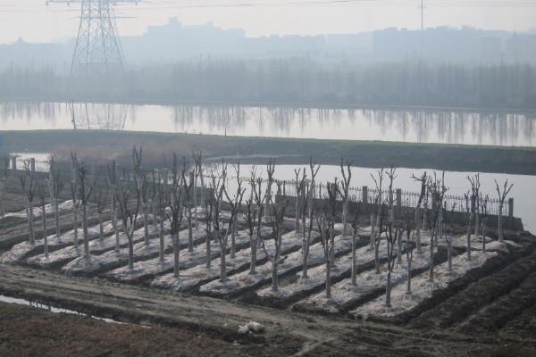 Xiaoshan, Hangzhou