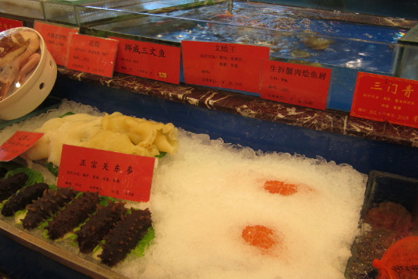 they keep the sashimi with other fish, scary!