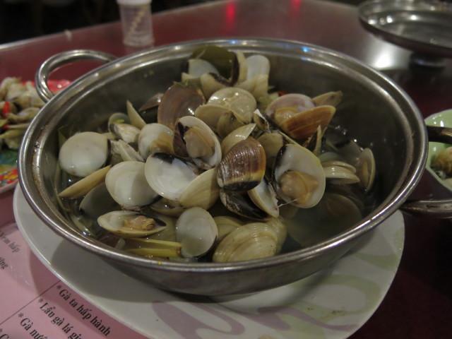 clam, good!
